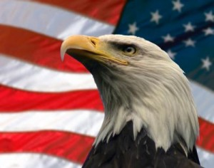 3014__american-eagle_download-american-eagle-for-free-and-best-quality-to-your-